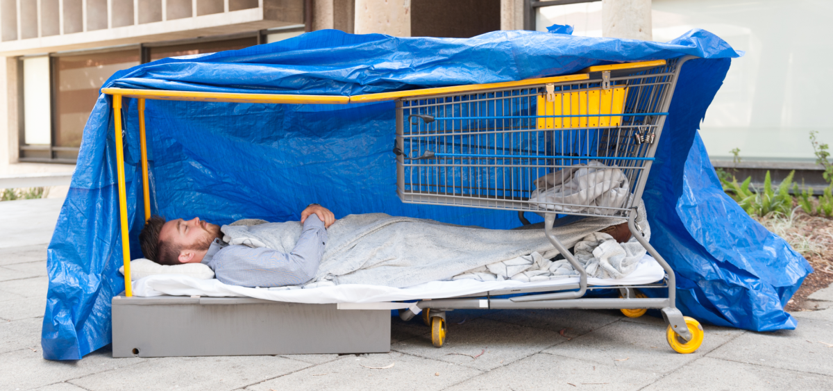shopping-cart-pull-out-bed