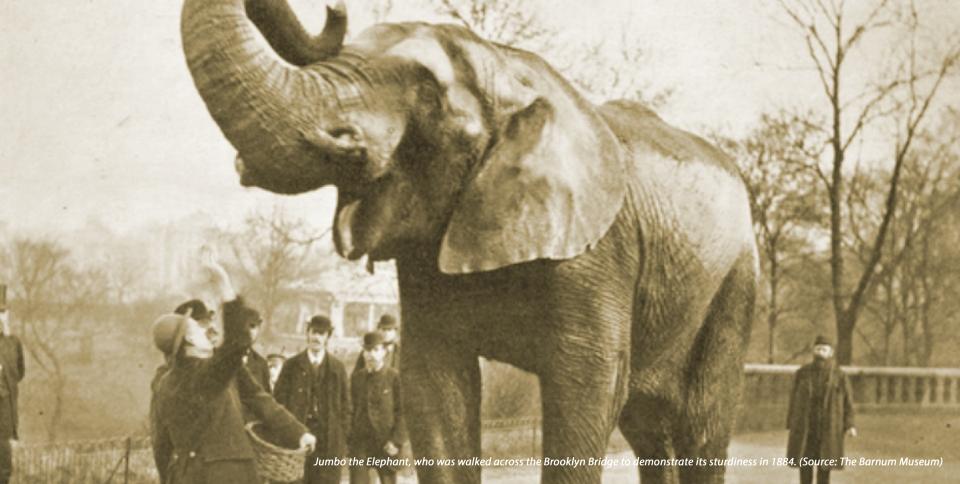 elephant_load-testing